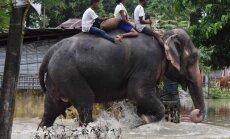 Foto: Plūdos Indijā, Nepālā un Bangladešā 170 bojāgājušie