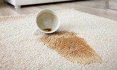 Kafijas paliekas uz mīkstā paklāja – kā operatīvi izmazgāt pleķi