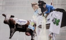 Протестующие фермеры засыпали штаб-квартиру ЕС сухим молоком