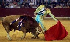 Spānijas tiesa atceļ Katalonijas vēršu cīņu aizliegumu