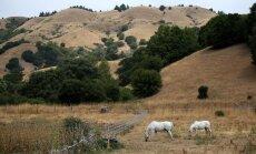 Sausuma māktajā Kalifornijā sodīs par ūdens izšķērdēšanu
