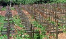 Ruanda izmeklē Francijas lomu 1994. gada genocīdā