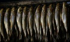 Rubļa krahs: Ventspils zivju konservu kombināts atlaiž 400 darbiniekus