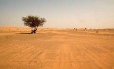 No slāpēm Sahāras tuksnesī miruši 44 cilvēki