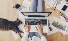 Vērsim pie ragiem: kā atgriezties darbā pēc ilgstošas pauzes