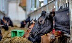 ES atbalsts lauksaimniekiem būs vien neliels atspēriens, uzskata Vaidere