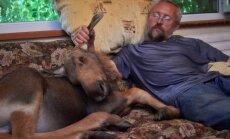 Vīrs no Pleskavas, kurš dzīvo kopā ar alni