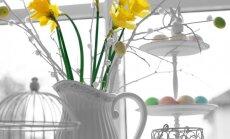 Pošam māju Lieldienām: ideju lādīte dekorācijām un galda klājumam