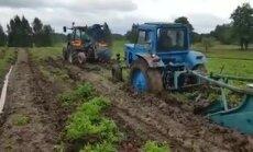 Pa dubļiem ar diviem traktoriem – Rēzeknes novadā zemnieki mēģina novākt kartupeļus