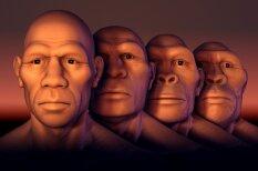 Video: Kā sešu miljonu gadu laikā mainījusies cilvēka seja