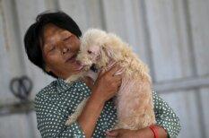 Kā 65 gadus veca sieviete no apēšanas izglāba 500 suņus