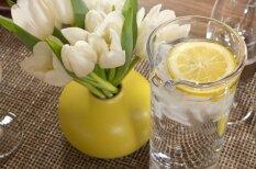 Piecas īpaši gardas bērzu un kļavu sulu receptes