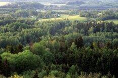 Pieci mīti par Latvijas meža nozari