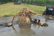 Кому дрова, кому искусство: художник создает скульптуры из древесных обломков