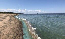 Foto: Vecāķu pludmalē fiksētas zilaļģes; nav ieteicams peldēties