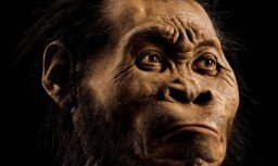 Первобытный человек оказался гораздо моложе, чем думали