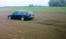Bauskā lauka apstrādei traktora vietā iejūdz 'Audi'