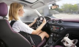 В Латвии сократилось количество автомобилей на душу населения
