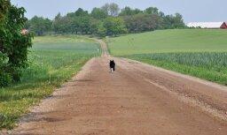 Латвийские деревни буквально исчезают с карты. Можно ли это остановить?