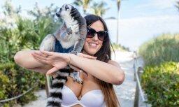 Sirsnīgi kadri: Skaistule draiskojas ar lemuru
