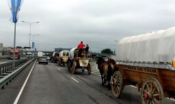 Foto: Rīgu šķērso neparasti ceļotāji senos zirgu pajūgos