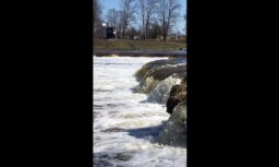 ВИДЕО: Над водопадом Вентас румба снова летает рыба