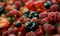 Ilgstošā sausuma dēļ vietējo augļu un ogu ražas apmērs būs mazāks nekā ierasts, secina eksperti