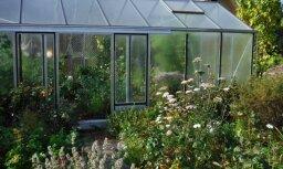 LLKC: Latvijas dārzos būtu jāīsteno vairāki pasākumi sausuma radītā posta mazināšanai