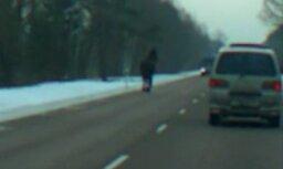 Apjucis zirgs izraisa sastrēgumu uz Jelgavas šosejas (video)