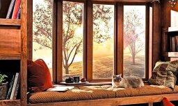Деревянное окно или стеклопакет: что лучше?