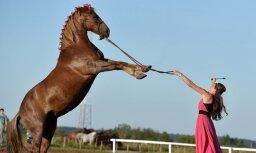 ВИДЕО: Оперная певица дрессирует лошадей с помощью пения