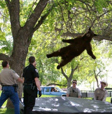 Laiks dejot, policist...