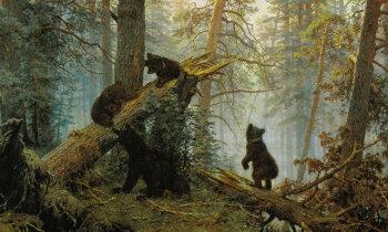 Kā krievu ainavista meistardarbs kļuva par konfekšpapīru. Šiškina lāčiem – 130