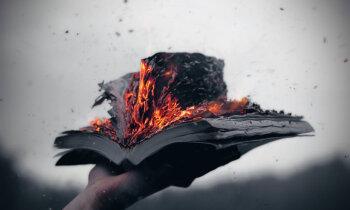 Сжечь Александрийскую библиотеку-2. Google оцифровала 25 млн. книг — почему их нельзя читать?