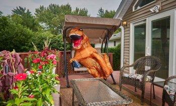 Dinozaura cienīgs īpašums – iespējams, radošākais risinājums mājokļu reklamēšanai