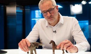 Par ziloņiem, strausiem un beigtu zirgu – 'Delfi TV ar Jāni Domburu' analīze par aizsarglīdzekļu trilleri