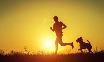Suns ASV nejauši noskrien pusmaratonu un izcīna septīto vietu