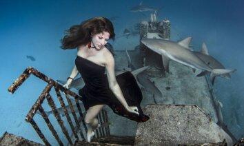Neticami kadri: modele pozē zem ūdens ar haizivīm