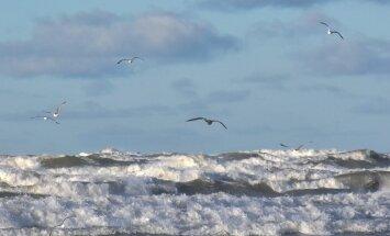 В среду в Латвии будет солнечно, но ветрено