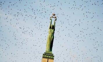 Территорию у памятника Свободы предлагают официально назвать площадью Бривибас