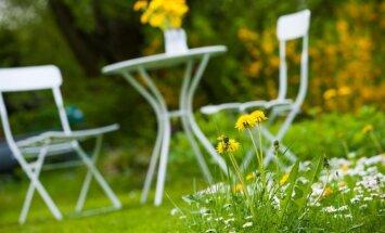 Atpūta pēc labi padarīta darba: feinas idejas dārza mēbelēm