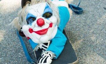 Mīlīgi un biedējoši – Ņujorkā aizvadīta Helovīna parāde suņiem