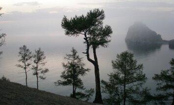 Ветра, шаманы и тающая рыбка. Что посмотреть и чем заняться на Байкале