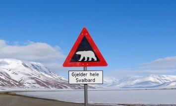 Polārlācis Norvēģijas salās uzbrūk 'Saules aptumsuma tūristam'