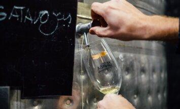 Латвия может! Латвийское вино интересует даже итальянцев