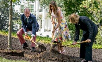 Nievas izpelnās Melānijas Trampas smalkie apavi, stādot koku