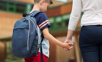 В этом году под реорганизацию попало 65 школ