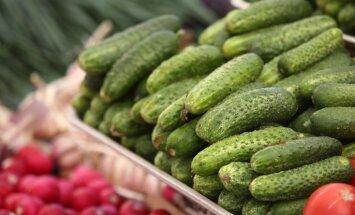 ZM joprojām pastāv uz PVN likmes samazināšanu Latvijai raksturīgiem augļiem un dārzeņiem