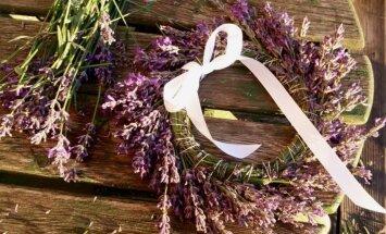 Vasaras smaržas iekonservēšana: radoši pielietojumi lavandu zariņiem