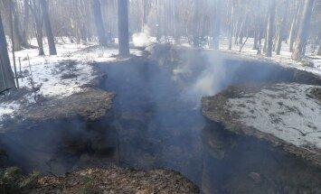 На Львовщине в день рождения Бандеры сожгли музей-землянку УПА